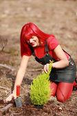 红色园丁 — 图库照片