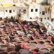 Foto Stock: Leather soaks in Fez, Morocco