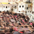 Foto de Stock  : Leather soaks in Fez, Morocco
