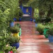 Stock Photo: Jardine Majorelle
