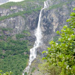 Norwegian waterfall — Stock Photo