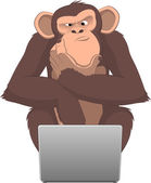 Monkey and computer — Stock Vector