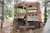 Abandoned Bus — Photo