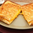Grilled Cheese Sandwhich — Stock Photo #23119576