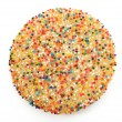 Sugar Cookie With Sprinkles — Stock Photo #23119962