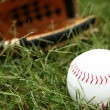 Closeup of Softball In Grass — Stock Photo #23120308