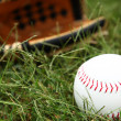 Stock Photo: Closeup of Softball In Grass