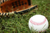 Closeup of Softball In Grass — Stock Photo
