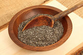 Bowl Of Chia Seeds With Spoon — Stock Photo