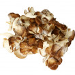 Top Down View Of Maitake Mushroom Pieces — Stock Photo #35571607