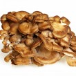 Side View Of Maitake Mushroom — Stock Photo #35571621
