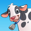 Smiling cow with a cowbell — Foto de Stock