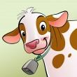 leende ko med bruna prickar och en cowbell — Stockfoto