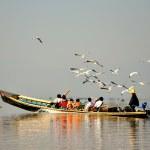 touristes sur le lac inle, Birmanie myanmar — Photo #23125246