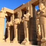 Постер, плакат: Ramesseum temple Egypt