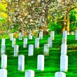 Arlington National Cemetery — Stock Photo