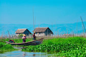 Floating garden in Myanmar — Stock Photo
