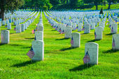 Arlington national cemetery, USA — Stock Photo