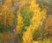 Blurry autumn trees through window glass — Stock Photo