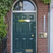 Stock Photo: Wooden entrance door with ivy