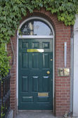 Wooden entrance door with ivy — Stock Photo