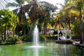 Lake. Fountain — Stock Photo