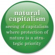 Stock Vector: Dictionary definition of term Natural Capitalism