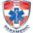 Stock Vector: EMT Paramedic Medical Design Shield