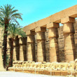 Egypt — Stock Photo #23294012