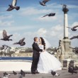 Newlyweds kiss at the square — Stock Photo