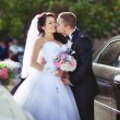 Stock Photo: Groom and beautiful bride near car