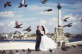 Gli sposi bacio al quadrato — Foto Stock