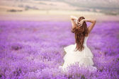 Beautiful Bride in wedding day in lavender field — Stock Photo