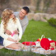 Pregnant woman and her husband relaxing on nature and have picnic in park — Stock Photo #38380501