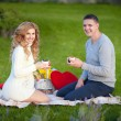 Pregnant woman and her husband relaxing on nature and have picnic in park — Stock Photo #38381145