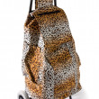 Aggressive compulsive leopard print shopping cart — Stock Photo