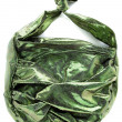 Green crackle iridescent metallized leather purse — Stock Photo #23632949