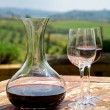 Red wine in a wine carafe and a two wine glasses in vineyard — Stock Photo #24606863