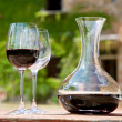 Red wine in a wine carafe and a two wine glasses in the vineyard — Stock Photo #24607085