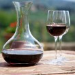 Red wine in a wine carafe and a two wine glasses in vineyard — Stock Photo #24607807