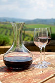 Red wine in a wine carafe and a two wine glasses in vineyard — Stock Photo