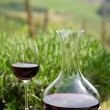 Red wine in a wine carafe and a wine glass in vineyard — Stock Photo