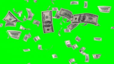 Flying banknotes of dollars. Isolated over green alpha — Stock Video