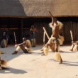Folk dances of Botswana and South Africa. — Stock Video