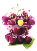 Cherries in bowl isolated — Stock Photo