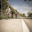 Group of cyclists on the road — Stock Photo #30397543