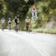 Group of cyclists on the road — Stock Photo #30397973