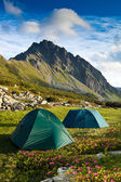 Two green tents in the mountains — Stock Photo