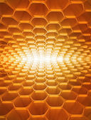 Honeycomb as the perfect backdrop — Stock Photo