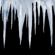 Natural icicles on a black background — Stock Photo #24547889